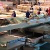 Видео: Производство оконного клеенного бруса для деревянных окон